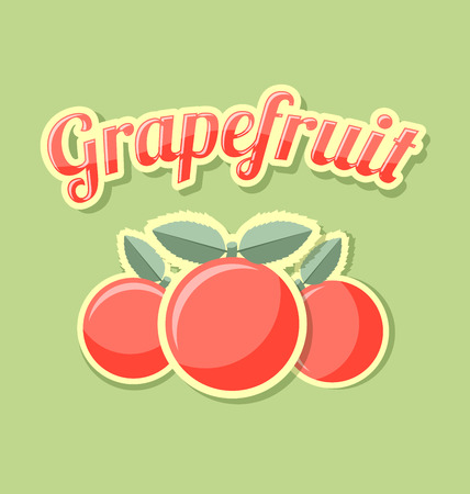 Retro grapefruit with title on pale green background Иллюстрация