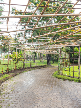to plant structure: Structure bamboo roof for vine creeper plant over footpath in the park