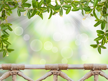 handrail: Vine leaves with small flower and handrail wood over abstract green bokeh background