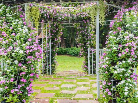結婚式の背景のための庭の小道に咲く花のアーチ
