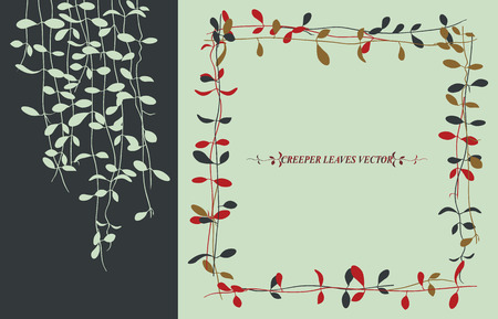 Isolated tropical creeper leaves vector for winter background