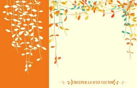 creeper: Isolated tropical creeper leaves vector for autumn background
