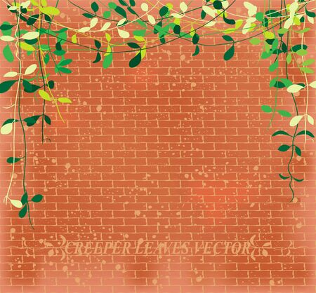 vine leaves: Vine leaves creeper over brown brick wall pattern, vector illustration background. Illustration