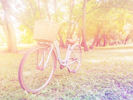 soft pedal: bicycle parking near tree in the park , soft focus and vintage filter effect