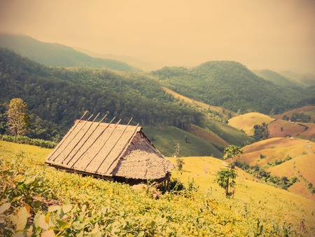 shanty: The country bamboo hut with leaves roof on the mountain, vintage filter effect