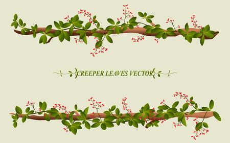 hojas parra: Frontera de la flor de la enredadera de la ilustraci�n planta de vid