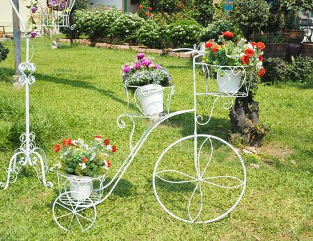 decorated bike: flower on white bicycle for decorating garden