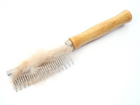 prongs: Wooden comb with metal prongs for grooming pet on white background