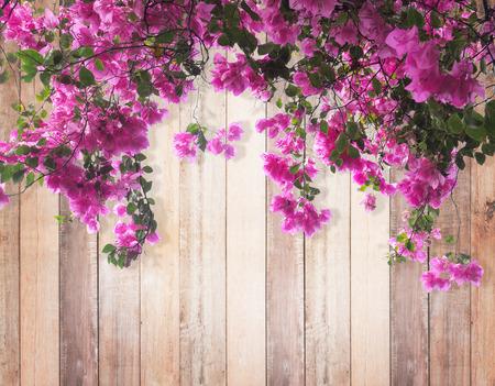 木材の背景にピンクのブーゲンビリアの花