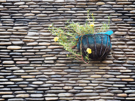 Hanged flowerpot decoration on stone wall background