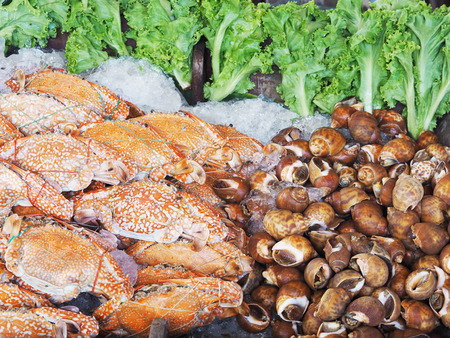 Stack of crabs and babylons cooked and freeze on ice in seafood supermarket Stock Photo