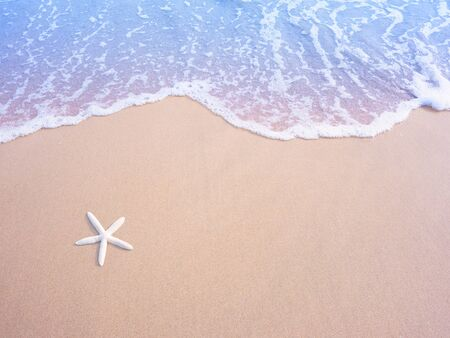 White small starfish on sand and pastel water wave, vintage filter effect. Summer beach on holiday vacation concept background. 写真素材