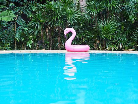 pink flamingo near blue outdoor swimming pool background. Banque d'images - 134795465