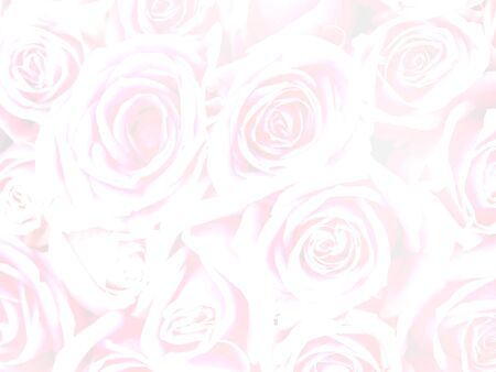 Floral abstract background. Pink rose flowers bouquet for valentines or wedding day background.