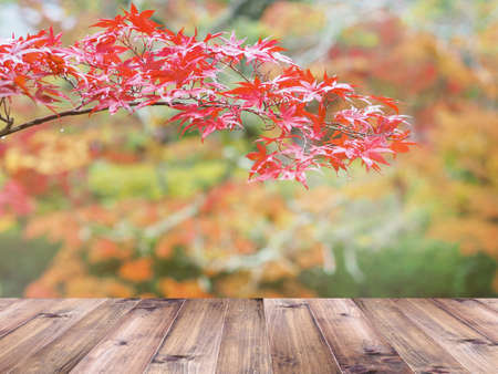 Wooden table top over red maple leaves in autumn. Thanksgiving background. Montage style to display the product. Foto de archivo