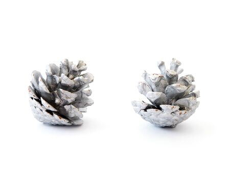 Close up dry pine cone silver color over white background. Christmas ornament.