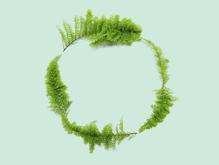 Fern leaves on green background. Leaf circle frame for spring time nature greeting card.