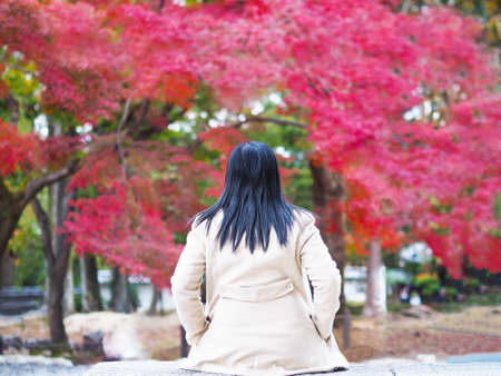 Back view of woman tourist sitting relaxation in the autumn park at Japan.