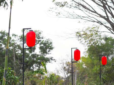 Red Chinese lanterns hanging for decoration the garden on Chinese new year day and celebration.