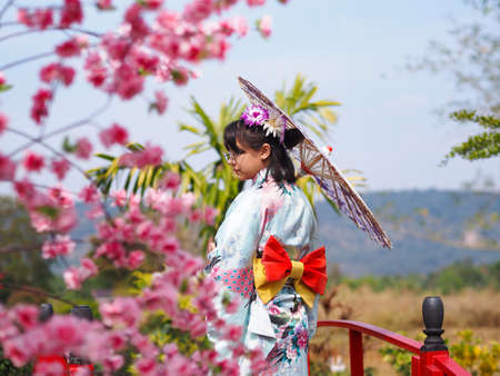 Asian tourist girl in kimono costume holding umbrella standing on red bridge with blurry cherry blossom flowers foreground. Japanese traditional tourism. Standard-Bild