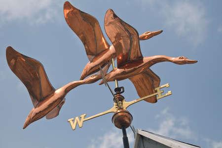 duck hawk in north america: Copper weathervane detail.