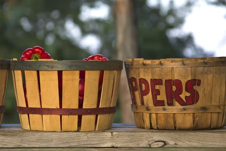 bushel: Red peppers in hand-letterd bushel basket at a roadside market.