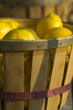 Lemons in a basket at a roadside farm stand in New England.