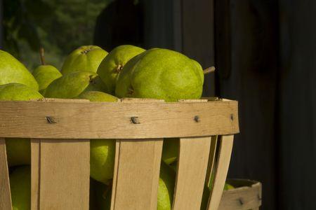 bushel: Pears in bushel basket at a roadside farm stand in New England.
