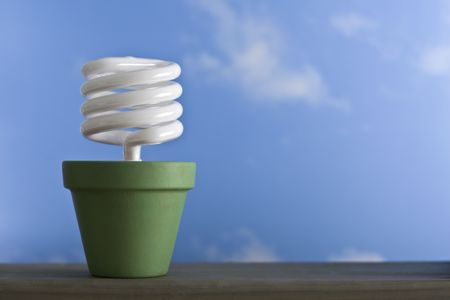 A single, energy-efficient compact fluorescent light bulb in a green painted clay pot. Stock Photo - 3033084