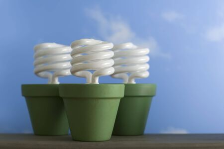 cfl: Energy-saving, compact fluorescent light bulbs in painted clay flower pots. Stock Photo
