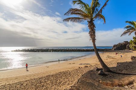 lanzarote: Palm tree on Flamingo beach in Playa Blanca on coast of Lanzarote island, Spain Stock Photo