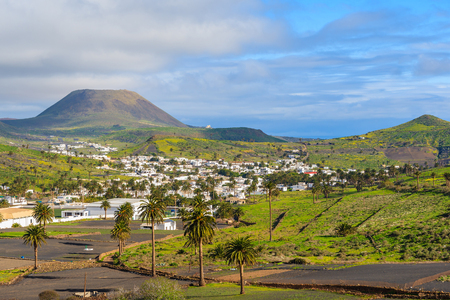 Palm trees in Haria mountain village, Lanzarote, Canary Islands, Spain