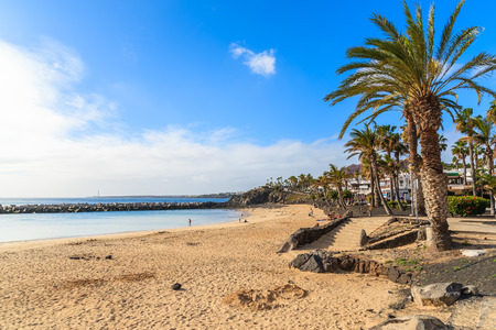 Flamingo beach with palm trees in Playa Blanca holiday village on coast of Lanzarote island, Spain 免版税图像