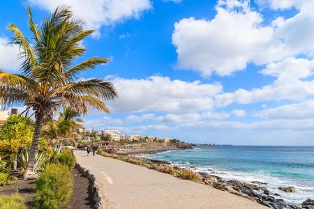 Palm tree and promenade along ocean in Playa Blanca holiday resort town, Lanzarote island, Spain