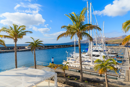 Palm trees in Puerto Calero marina built in Caribbean style, Lanzarote island, Spain Stock Photo