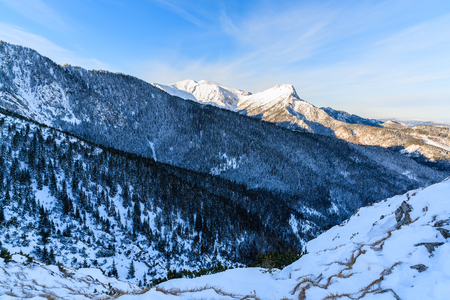 giewont: View of Giewont mountain in early morning light after sunrise in Tatra Mountains, Poland