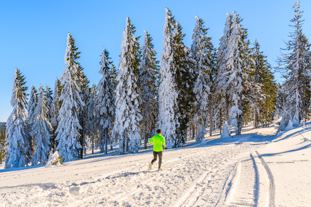run way: Unidentified runner on trail in winter landscape of Gorce Mountains, Poland Stock Photo