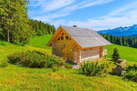 Holzhaus auf der grünen Wiese im Sommer, Tatra-Gebirge, Polen