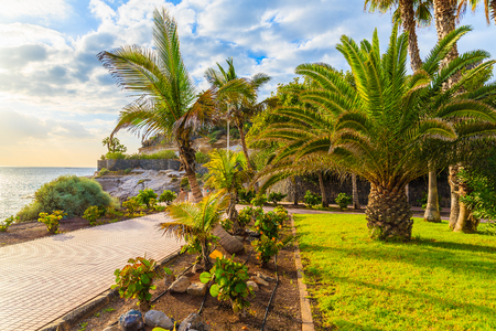 Exotic coastal promenade with palm trees in Costa Adeje holiday town, Tenerife, Canary Islands, Spain Stock Photo