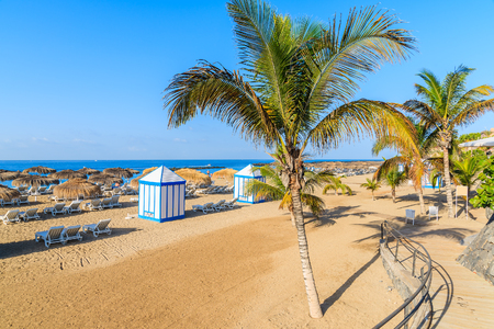 A view of sandy El Duque beach with tropical palm trees in Costa Adeje town, Tenerife, Canary Islands, Spain