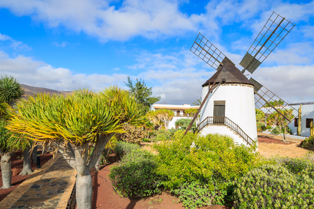 Old windmill in tropical gardens of Antigua village, Fuerteventura, Canary Islands, Spain