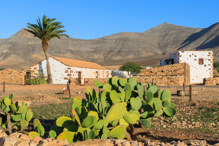 Traditional farm house in Tefia village with cactus plants in foreground, Fuerteventura, Canary Islands, Spain