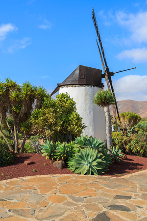 Old windmill in tropical garden in Antigua village, Fuerteventura, Canary Islands, Spain