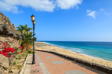 Tropical flowers on promenade along Jandia beach in Morro Jable with ocean view, Fuerteventura, Canary Islands, Spain