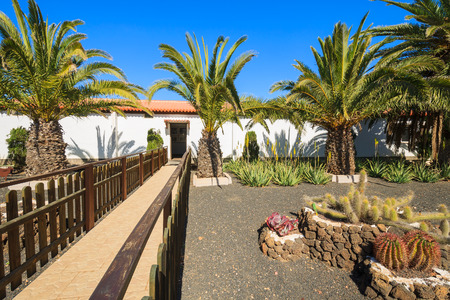 oliva: Canary style buildings and tropical plants in La Oliva village Heritage Art Center, Fuerteventura, Canary Islands, Spain Editorial