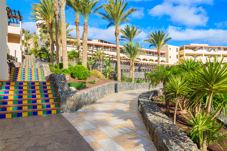 MORRO JABLE, FUERTEVENTURA - FEB 6, 2014: walking alley in tropical gardens of luxury hotel Barcelo Jandia Mar. This is a popular holiday destination for tourists on Fuerteventura island. Editorial