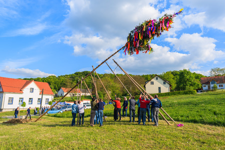 GLASING VILLAGE, AUSTRIA - APR 30, 2016: men erecting a May tree during spring celebration. In Germany and Austria the maypole is a tradition going back to the 16th century. Editorial