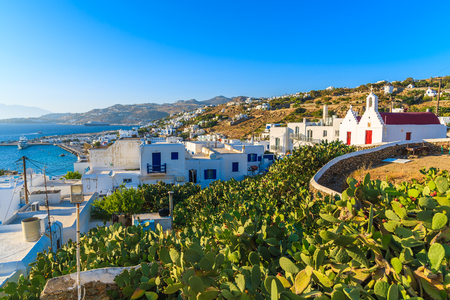 Cacti plants on field and typical Greek white church building in Mykonos town, Mykonos island, Greece Stock Photo
