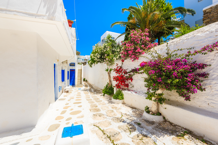 A view of whitewashed street with flowers in beautiful Mykonos town, Cyclades islands, Greece 免版税图像