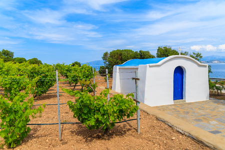 Typical Greek white church building in vineyards, Ampelas village, Paros island, Greece